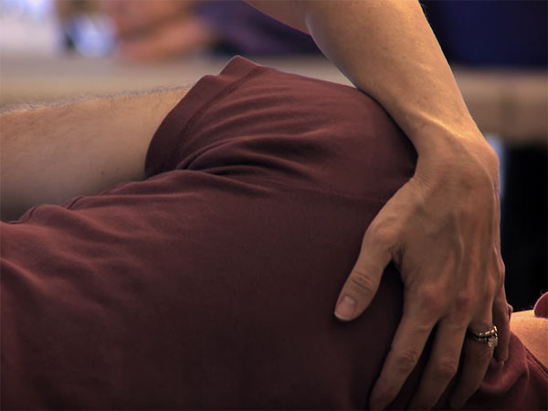 Feldenkrais Trainings and Information